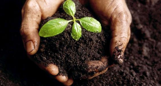 Foto-Responsabilidad-Desarrollo-Rural-Sostenible
